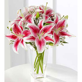 Holiday Lilies