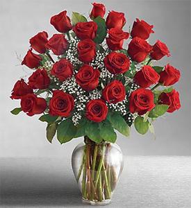 Ahava Roses, Israel, Ness Ziona